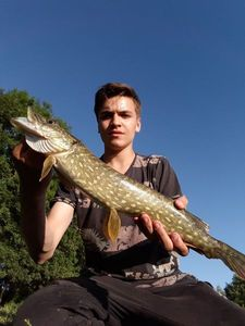 Northern Pike — Axel Demetz