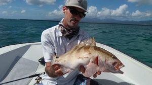 merou de nassau — Guillaume Martinez moniteur guide de pêche