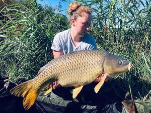 Common Carp — Alexia Maess