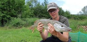 Northern Pike — Arthur Krauser