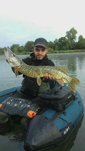 Northern Pike — Kylian Coutelet