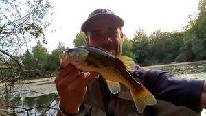 Largemouth Bass — Nelson De Carvalho