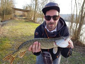 Northern Pike — David Cuvelier