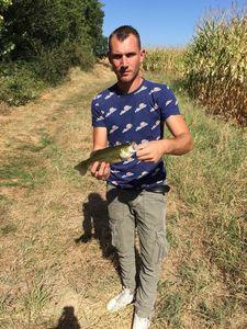 Largemouth Bass — jessy dron