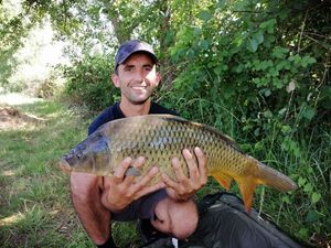 Common Carp — Tetedemoule 54