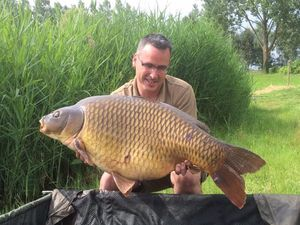 Common Carp — Stephane Colinmaire