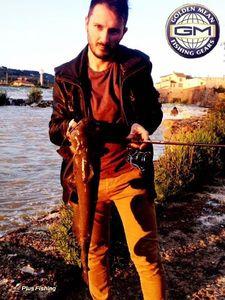 Channel Catfish — Alessandro Pesci
