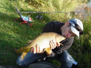 Common Carp — Nicolas Coulon