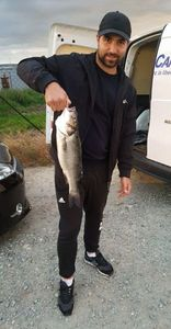 European Bass — Maxime Maugendre