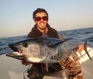 Bluefin Tuna — Nicolas Leveque