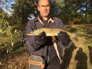 Northern Pike — Jean Marc Mauboussin