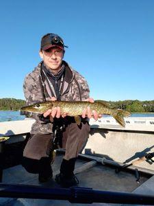 Northern Pike — Gregory Meytadier