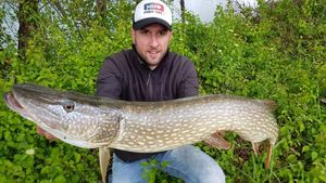 Northern Pike — Anthony Deloupe