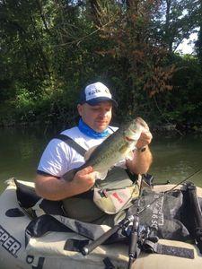 Largemouth Bass — Gerardo Ramona