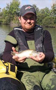 Largemouth Bass — Nicolas Croissant