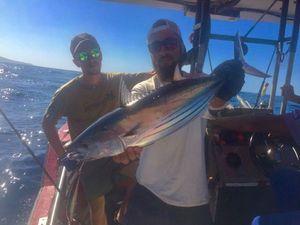 Skipjack Tuna — Raphael Du Merilis