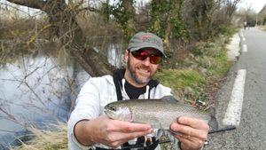 Rainbow Trout — Mich  Pêche