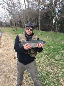 Rainbow Trout — Franck Sossy Gurrieri Pba