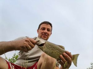 Brown Trout — Yoann Fortry