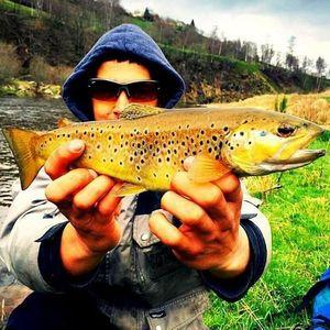 Brown Trout — Jonathan Kuster