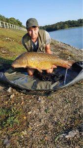 Common Carp — Louis Gorin