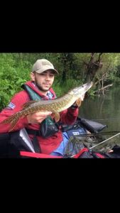 Northern Pike — Chris Haase