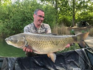 Grass Carp — Stephane Colinmaire