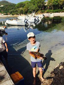 Mérou Brun — Côme rockfishing