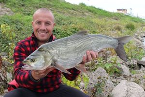 Asp — Sebcricri Fishing