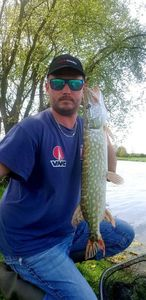 Northern Pike — Alexandre Rousseau