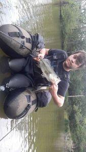 Largemouth Bass — Christophe Soudre