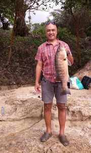 African Red Snapper — Titi Nonore