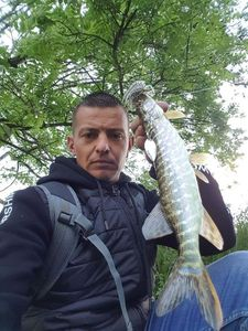 Northern Pike — Ludovic Puybertier