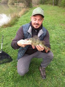 European Perch — fishing_nievre TV
