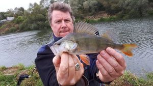European Perch — Philippe Mallet