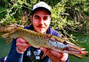 Northern Pike — www.hook-up.eu John Coffee