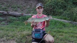 Northern Pike — Maxime Cerqueira