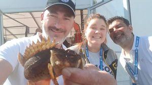 Brown Scorpionfish — Eric Guillaume