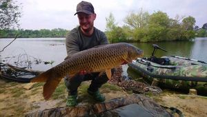 Common Carp — Bruno Lecadredepeche Etange