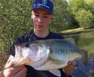 Largemouth Bass — Matthieu VOLANT