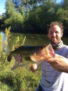 Largemouth Bass — Maxime Severin
