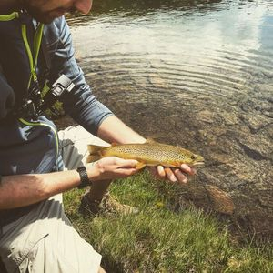 Brown Trout — Victor Damin (CarcaFishing)
