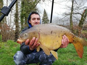Leather Carp — Olivier Frobert teamcarnacarp03