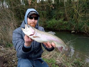 Rainbow Trout — Bsa Mickael