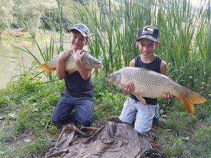 Common Carp — jimmy maistrello guide de pêche