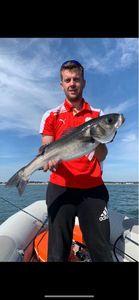 European Bass — Sauveur Hanin