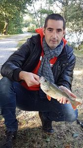 European Perch — Romain Bourcier