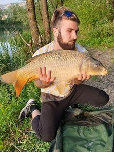 Common Carp — Martial LODBROCK