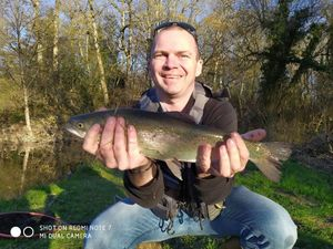 Rainbow Trout — Olivier Thiriau