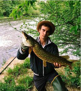 Northern Pike — Fanatick Fisher